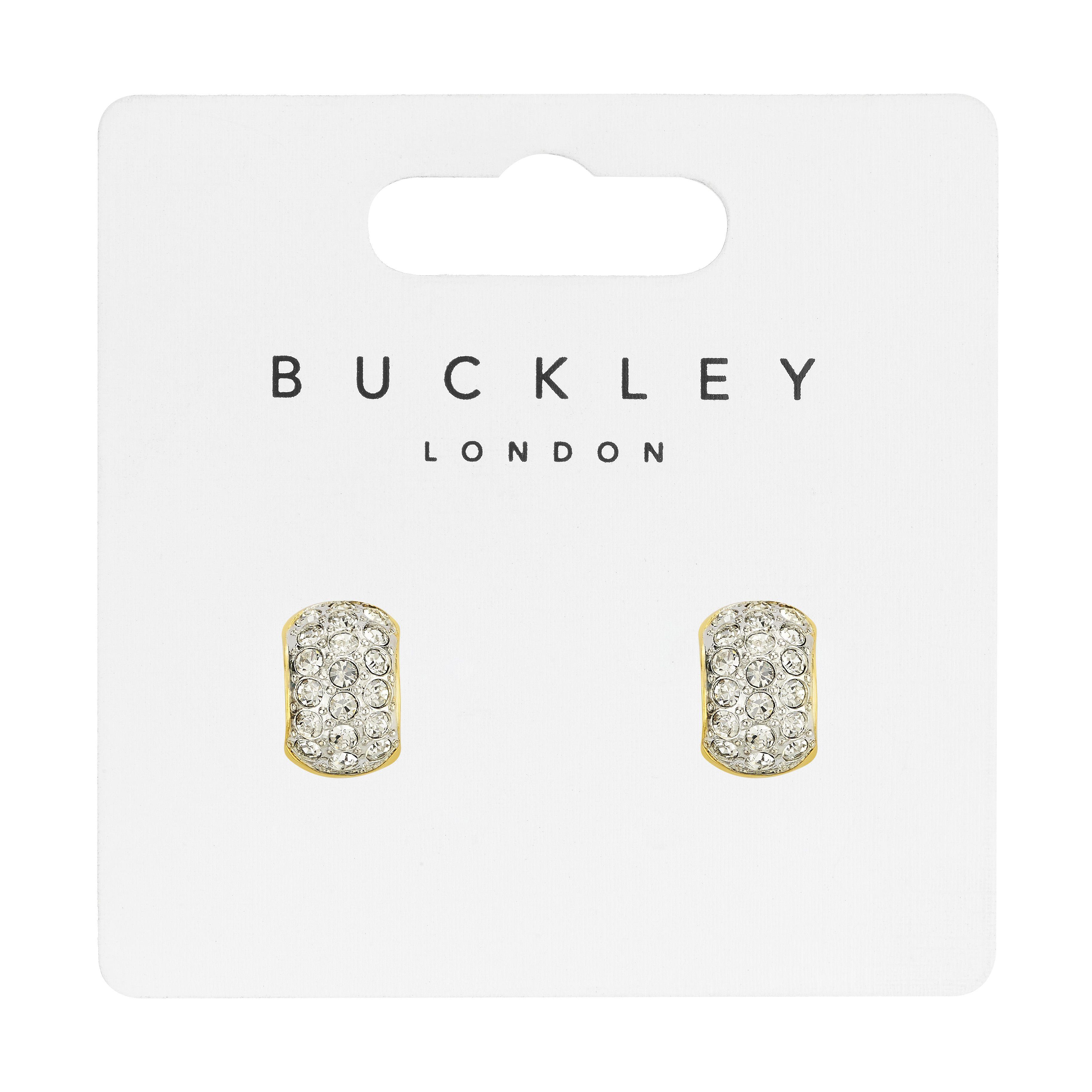 Two Tone Gold Hoop Earrings